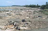 Coastal damage and debris
